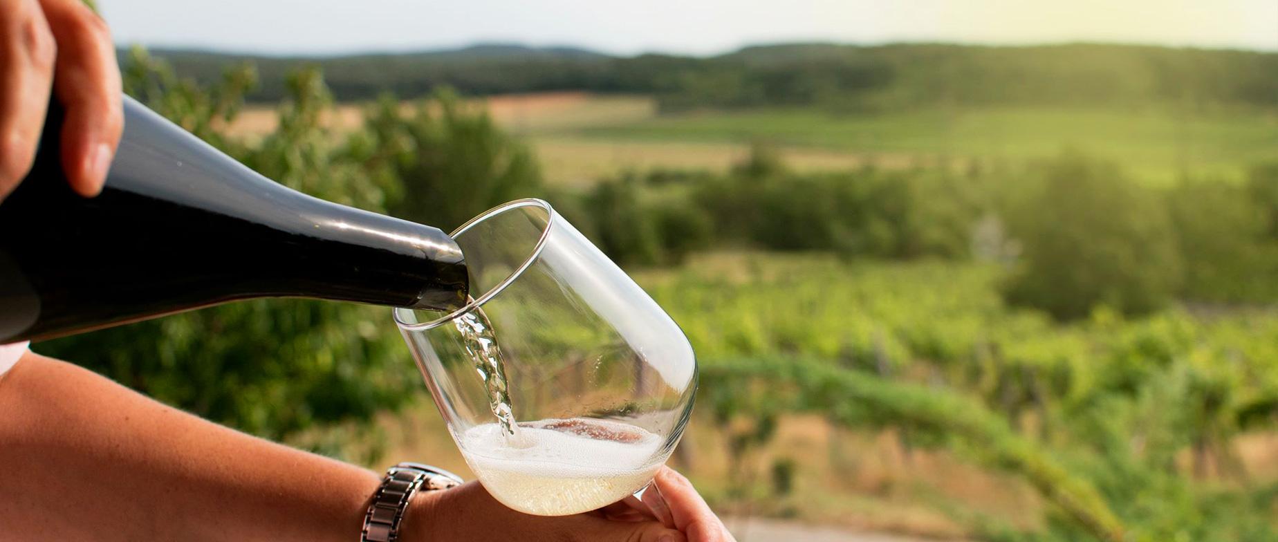 Az én pezsgőm–pezsgőkóstolás és degorzsálás